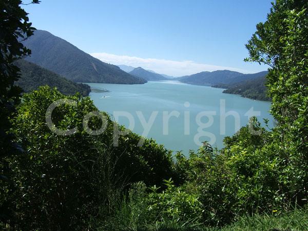 New Zealand Gallery: Marlborough Photos : New Zealand Image Gallery