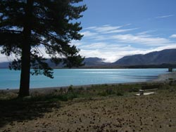 Copyright: Kiwi Web Works. Lake Tekapo, New Zealand