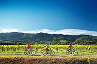 Cycling the Wine Trail in Nelson New Zealand. Copyright: Dean McKenzie