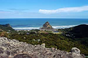 Piha Beach near Auckland, New Zealand. Copyright: Scott Venning