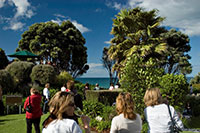 Looking through the greenery to the sea beyond in Tauranga New Zealand. Copyright: Scott Venning