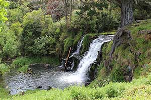 The beautiful Waiuku Falls in Auckland, New Zealand. Copyright: Hayes Photography
