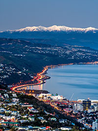 View of Wellington City and the Wellington Harbour. Copyright: Rob Suisted